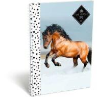 Geo Horse Snow kockás füzet - A5 - Lovas