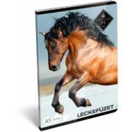 Geo Horse Snow leckefüzet - A5 - Lovas