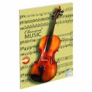 Classical Music hangjegyfüzet A4 hegedű