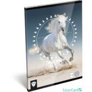 Lovas kockás A5 füzet 27-32 - Kis Bagoly Horse