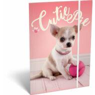 Gumis mappa - Pet Cutie Pie - A4 - kutyás