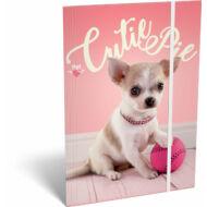 Gumis mappa - Pet Cutie Pie - A5 - kutyás