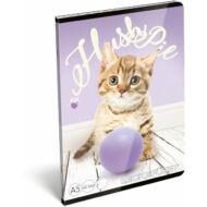 Pet Hush Pie cicás leckefüzet