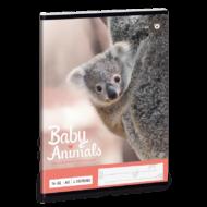 Baby Animals vonalas füzet - A5 - 2. osztályos / 16-32 - Koalás