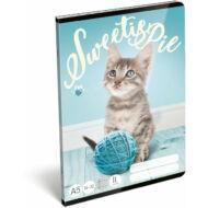 Cicás vonalas füzet - A5 - 2. osztályos / 16-32 - Sweetie Pet Pie