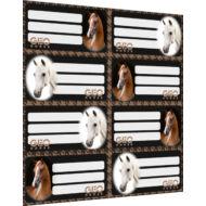 FÜZETCÍMKE - Geo Horse fekete mix Lovas - 8 etikett/ív