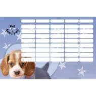 Pet Good Pup órarend - nagy - Kutyás
