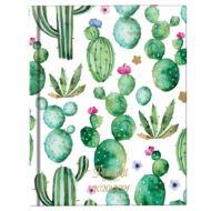Cactus diáknaptár - B6 heti hallgatói tervező - PlanAll Study kaktuszos