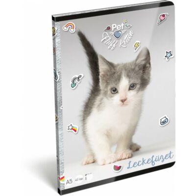 Pet Fluff Kitten cicás leckefüzet