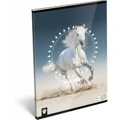 Lovas sima füzet - A4 - 80-32 - Kis Bagoly Horse