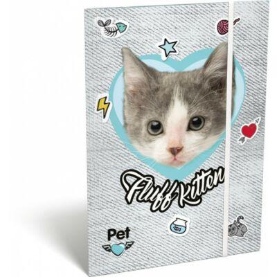 Pet Fluff Kitten cicás A5 gumis mappa